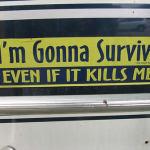 survive bumper sticker