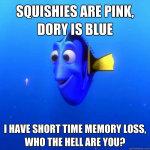 dory memory